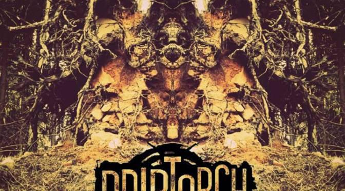 Interview mit Driptorch